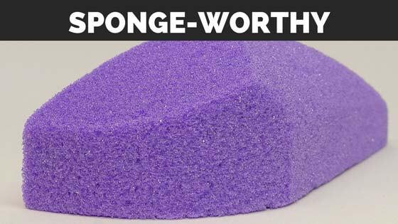 Sponge-worthy