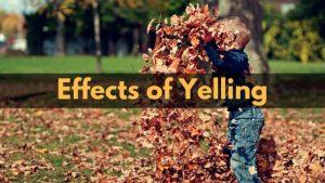 effect-yelling
