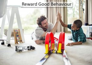 Reward-Good-Behaviour