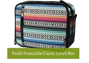 packlt-freezable-classic-lunchbox